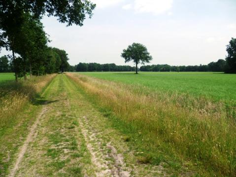 Onderweg naar Holten